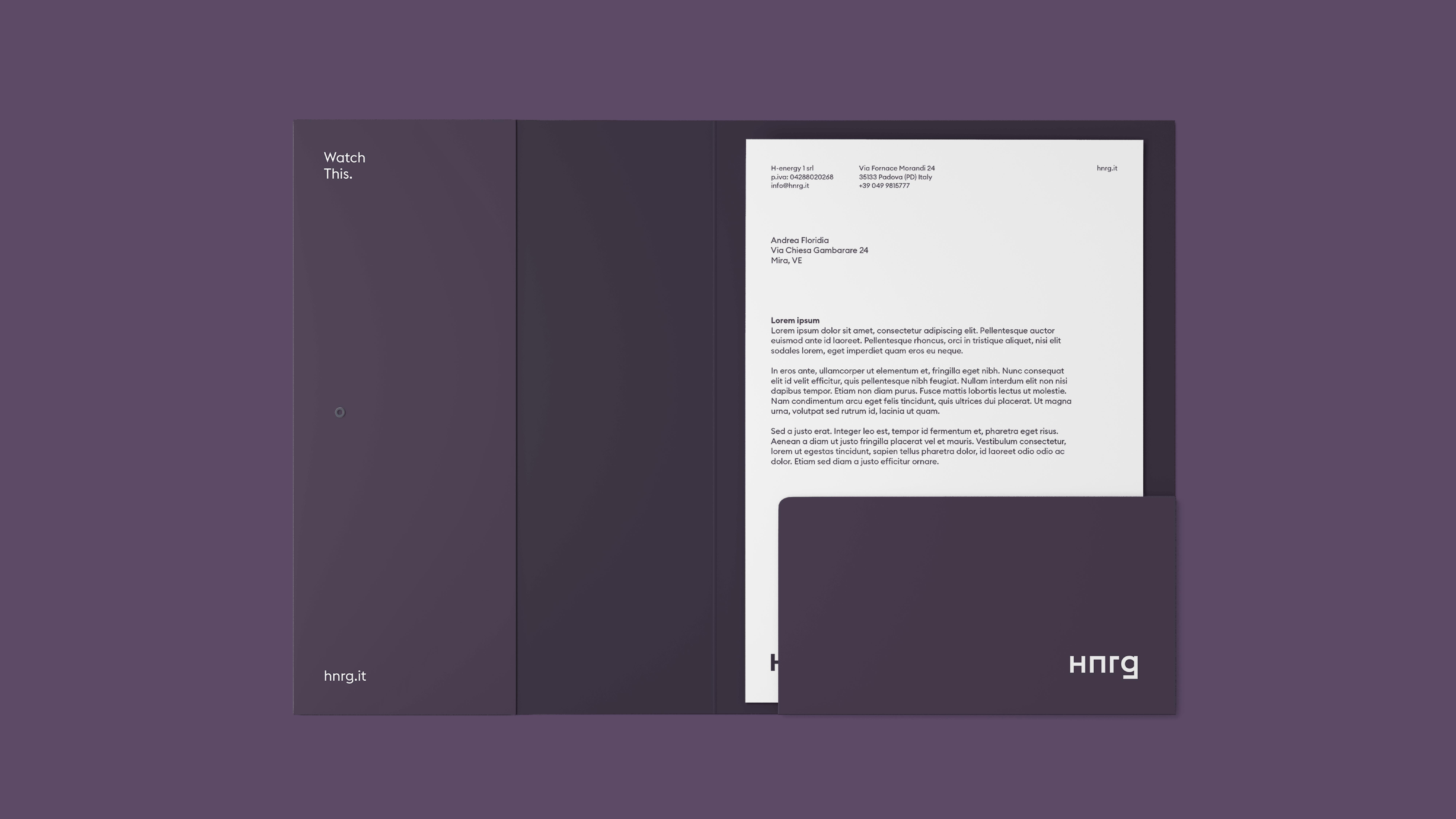 HNRG_3